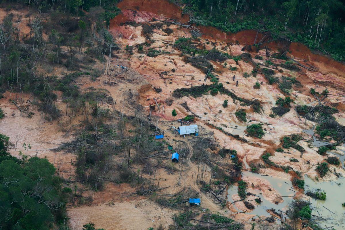 Acredita-se que milhares de garimpeiros estão extraindo ouro das ricas reservas indígenas de Roraima.